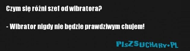 Czym się różni szef od wibratora?  - Wibrator nigdy nie będzie prawdziwym chujem!