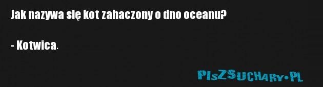 Jak nazywa się kot zahaczony o dno oceanu?  - Kotwica.