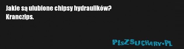 Jakie są ulubione chipsy hydraulików? Kranczips.