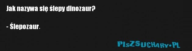 Jak nazywa się ślepy dinozaur?  - Ślepozaur.