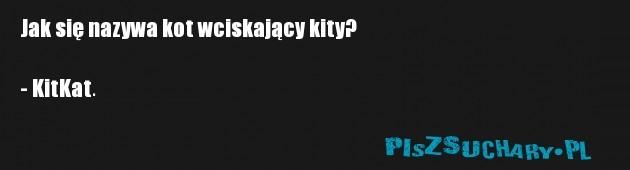 Jak się nazywa kot wciskający kity?  - KitKat.