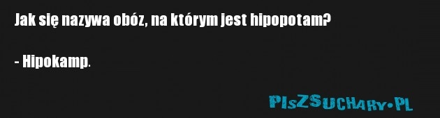 Jak się nazywa obóz, na którym jest hipopotam?  - Hipokamp.