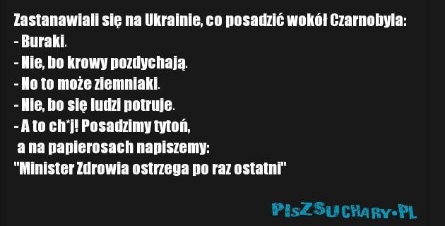 """Zastanawiali się na Ukrainie, co posadzić wokół Czarnobyla:  - Buraki.  - Nie, bo krowy pozdychają.  - No to może ziemniaki.  - Nie, bo się ludzi potruje.  - A to ch*j! Posadzimy tytoń,  a na papierosach napiszemy: """"Minister Zdrowia ostrzega po raz ostatni"""""""