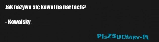 Jak nazywa się kowal na nartach?  - Kowalsky.