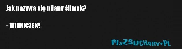 Jak nazywa się pijany ślimak?  - WINNICZEK!