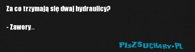 Za co trzymają się dwaj hydraulicy?   - Zawory...