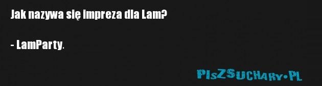 Jak nazywa się impreza dla Lam?  - LamParty.
