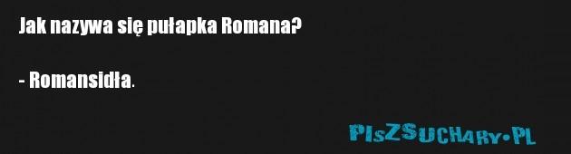 Jak nazywa się pułapka Romana?  - Romansidła.