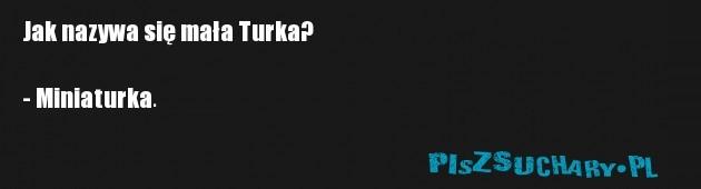 Jak nazywa się mała Turka?  - Miniaturka.
