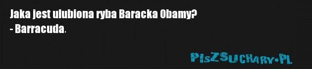 Jaka jest ulubiona ryba Baracka Obamy? - Barracuda.