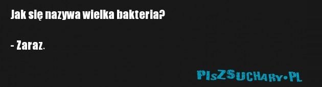 Jak się nazywa wielka bakteria?  - Zaraz.