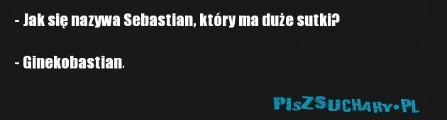 - Jak się nazywa Sebastian, który ma duże sutki?  - Ginekobastian.