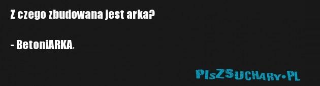 Z czego zbudowana jest arka?   - BetoniARKA.