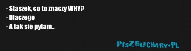- Staszek, co to znaczy WHY? - Dlaczego - A tak się pytam...