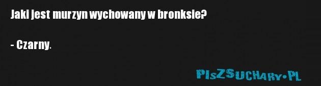 Jaki jest murzyn wychowany w bronksie?  - Czarny.