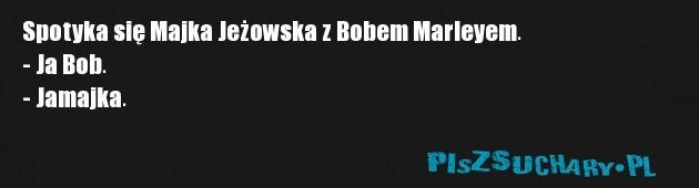 Spotyka się Majka Jeżowska z Bobem Marleyem. - Ja Bob.  - Jamajka.