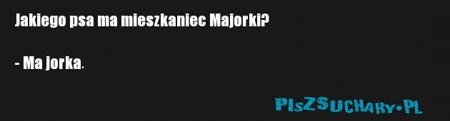 Jakiego psa ma mieszkaniec Majorki?  - Ma jorka.