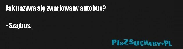 Jak nazywa się zwariowany autobus?  - Szajbus.