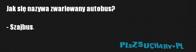 Jak się nazywa zwariowany autobus?  - Szajbus.