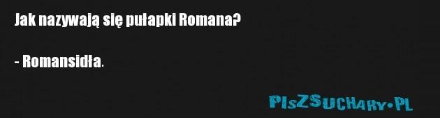 Jak nazywają się pułapki Romana?   - Romansidła.