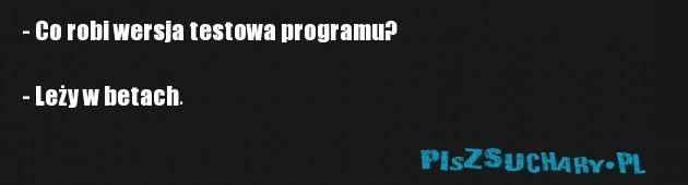 - Co robi wersja testowa programu?  - Leży w betach.