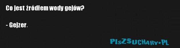 Co jest źródłem wody gejów?  - Gejzer.