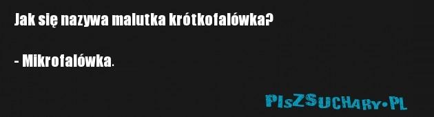 Jak się nazywa malutka krótkofalówka?  - Mikrofalówka.